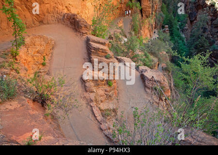 UT00454-00...UTAH - Hikers on the lower section of Walter's Wiggles, a series of switchbacks up a cliff below Scouts Lookout on the West Rim and Angel - Stock Photo
