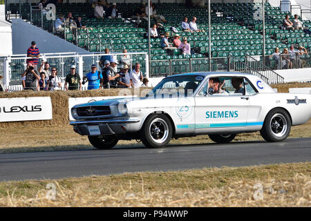 Impressions from  a 'walk around' Goodwood Festival of Speed. Credit Gary Blake/Alamy Live News. - Stock Photo