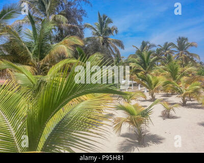 tropical beach with palm trees, sand and blue sky, located on the island of Mussulo in Luanda, Angola - Stock Photo