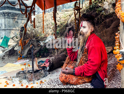 Sadhu posing for devotees during the traditional Hindu festival Maha Shivaratri in the vicinity of Pashupatinath temple in Kathmandu, Nepal - Stock Photo
