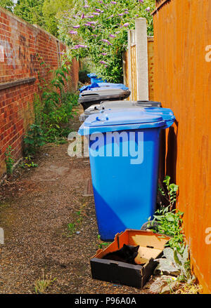 Waste and recycling bins with a cat in a box in a back alley in Norwich, Norfolk, England, United Kingdom, Europe. - Stock Photo