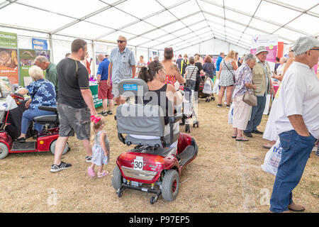 Cheshire, UK. 15 July 2018 - Disability Awareness Day in Walton Hall and Gardens, Cheshire England, UK - The weather was hot and sunny as Warrington Disability Partnership held its 27th annual Disability Awareness Day event within the grounds of Walton Hall and Gardens where crowds of people experienced exhibitions, art, sports, a main entertainment arena and plenty of fun for children. The exhibitors displayed many devices to assist those with varying disabilities Credit: John Hopkins/Alamy Live News Credit: John Hopkins/Alamy Live News - Stock Photo