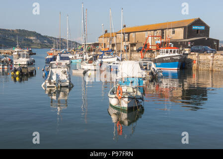 Lyme Regis, Dorset, UK. 15th July 2018.  UK Weather: Warm and sunny evening in Lyme Regis. The boats in Lyme Regis Harbour are reflected in the warm evening sunshine. Credit: Celia McMahon/Alamy Live News. - Stock Photo
