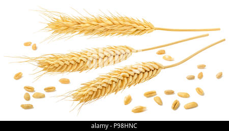 Wheat ears and grains isolated on white background with clipping path. Horizontal composition for cereal package design - Stock Photo