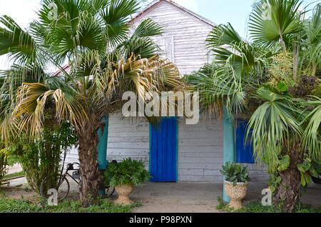 Vinales Valley in Cuba, tobacco, cigars, landscape, sunny, season, vacation, hilly landscape, agriculture, farm houses, tobacco farm, palm trees, biking - Stock Photo