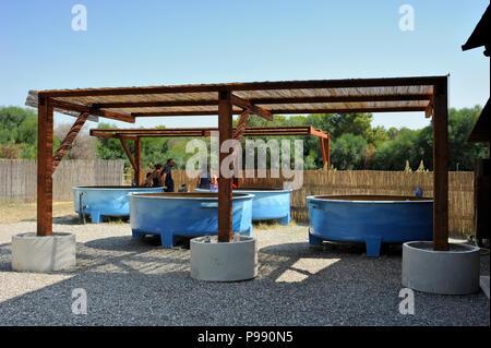 italy, basilicata, policoro, riserva regionale bosco pantano, wwf natural reserve, Centro Recupero Tartarughe Marine (marine turtles recovery centre) - Stock Photo