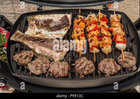 Fish, chicken skewers and meatball on the grill - Stock Photo