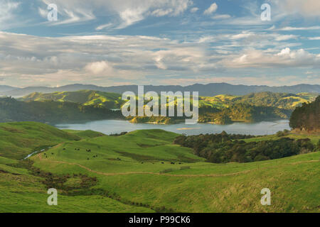 View over Coromandel peninsula from state highway 25 in the winter evening after rain,. Near Manaia, 15 km south of Coromandel town. New Zealand - Stock Photo