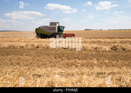 A combine harvester works in a field cutting wheat - Stock Photo
