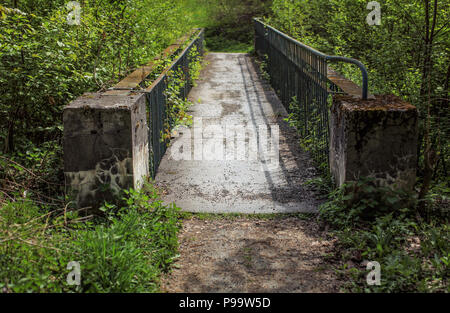 Small old concrete bridge, fence rusted, covered with thick vegetation with green forest around. - Stock Photo