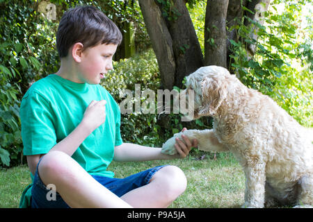 Boy Teaching Pet Dog Tricks In Garden At Home - Stock Photo