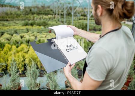 Gardener working in the greenhouse - Stock Photo