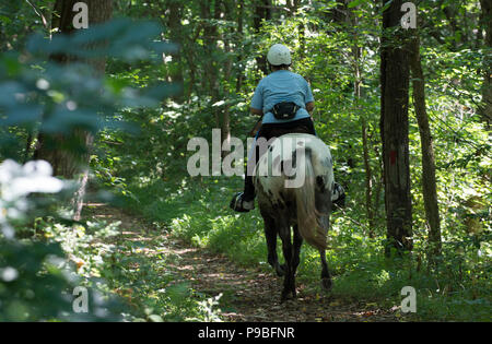 UNITED STATES: July 16, 2018: Brenda Senseney rides her horse Dolly along farmstead trail at the Blue Ridge Center For Environmental Stewardship. Loud - Stock Photo