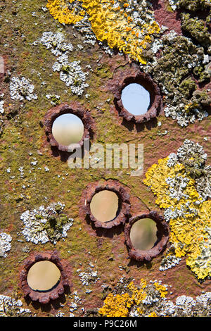 background image of five bullet holes in weathered metal with rust and lichens growing - Stock Photo