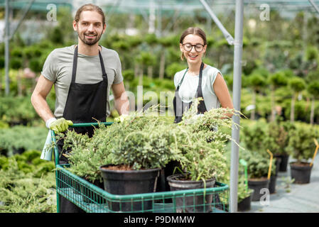 Workers with shopping cart in the greenhouse - Stock Photo
