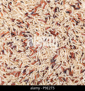 food background from texture assorted rice close-up - Stock Photo