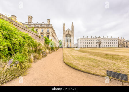 Path between Clare college and the Back lawn of King's college, university of Cambridge, England, leading to the latter's tudor chapel and its Gibb's  - Stock Photo