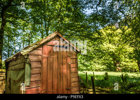 An old, abandoned garden shed amid a woodland garden. - Stock Photo