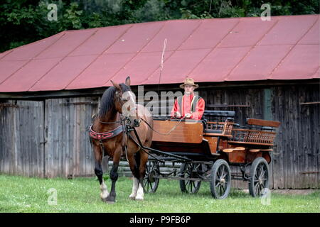 Russia. 18th July, 2018. TULA REGION, RUSSIA - JULY 18, 2018: A horse-drawn carriage serves Russian writer Leo Tolstoy's Yasnaya Polyana museum-estate in the Tula Region, where his descendants and relatives gather from all over the world ahead of his 190th birthday. Sergei Bobylev/TASS Credit: ITAR-TASS News Agency/Alamy Live News - Stock Photo