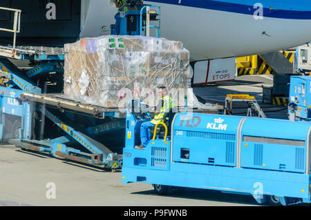 KLM ground crew load freight into the hold of a KLM Boeing 787-9 - Stock Photo