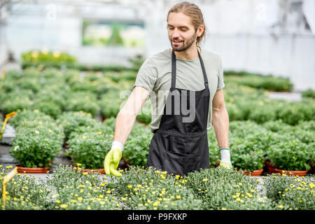 Worker with flowers in the greenhouse - Stock Photo