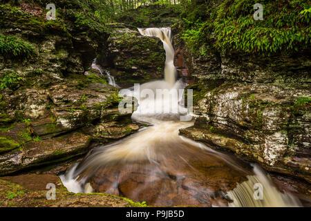 Adams Falls Bridal-Veil Chute Waterfall, Rickett's Glen State Park, Pennsylvania, USA - Stock Photo
