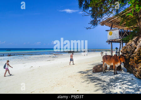 local life on paradise island Zanzibar - Stock Photo