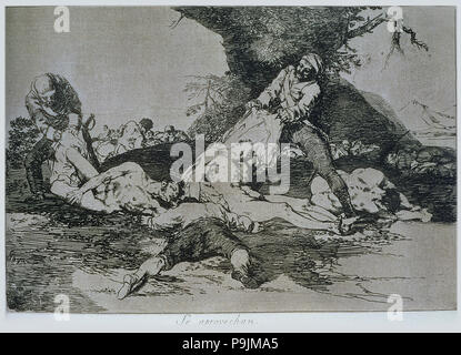 The Disasters of War, a series of etchings by Francisco de Goya (1746-1828), plate 16: 'Se aprove… - Stock Photo