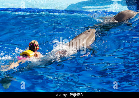 Girl swims in pool with dolphins back view - Stock Photo