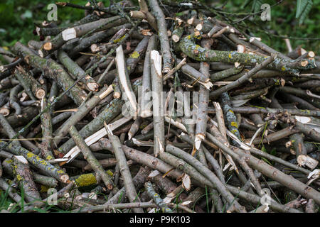 Pile of wood for heating in the winter - Stock Photo