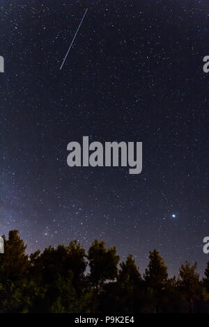 Falling stars over the forest at the Troodos mountains in Kakopetria village in Cyprus - Stock Photo
