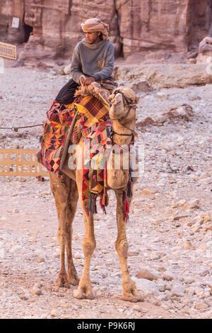 PETRA, JORDAN - APRIL 28, 2016: Bedouin young man riding on his camel in Petra Jordan - Stock Photo
