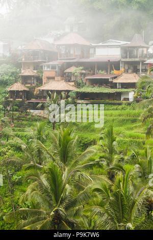 Tegalalang Ceking rice terraces in Ubud, Bali - Stock Photo