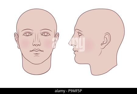 Hand drawn human head in face and profile. Flat vector isolated on white background. The drawings can be used independently of each other. - Stock Photo