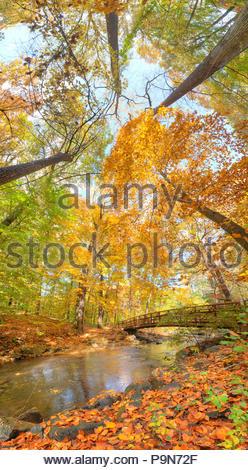 Sligo Creek passes under a bridge in the fall. - Stock Photo