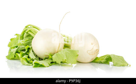 Two white radish bulbs with green leaves isolated on white background - Stock Photo