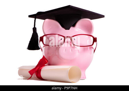 Student college graduate Piggy Bank degree diploma isolated on white background, front view - Stock Photo