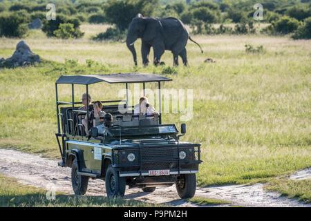 A caravan of tourists on a safari snap photos of the wildlife. Hwange National Park. Hwange, Zimbabwe. - Stock Photo