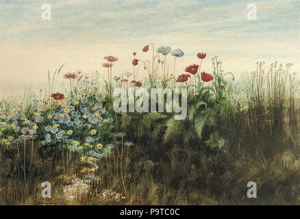 Nicholl  Andrew - a Bank of Poppies  Cornflowers  Marigolds and Other Wild Flowers - Stock Photo