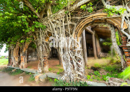 An ancient temple full of roots sticking Bodhi withstand over time. The temple is deserted but attracts people to take pictures - Stock Photo