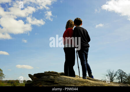 low angle rear portrait shot of two ten year old boys with dog lead standing on a fallen tree watching and discussing something in the distance - Stock Photo