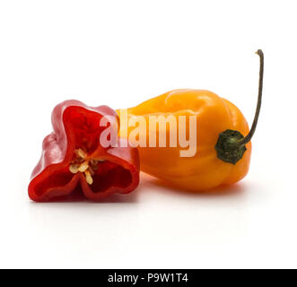 Orange Habanero chili with one red half isolated on white background hot Chinese pepper - Stock Photo