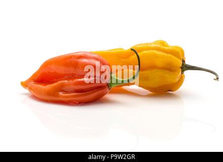 Two Habanero chili isolated on white background yellow orange hot peppers - Stock Photo