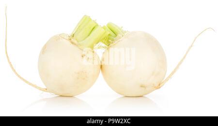 White radish isolated on white background two bulbs - Stock Photo