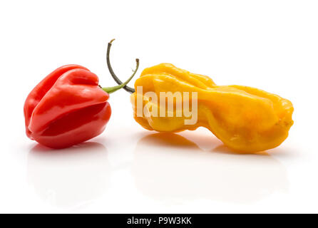 Two Habanero chili yellow red hot peppers isolated on white background - Stock Photo