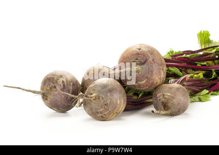 Red beet bundle with greens isolated on white background five bulbs root with fresh leaves - Stock Photo