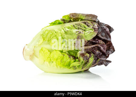 One whole fresh green lettuce red little gem variety isolated on white - Stock Photo