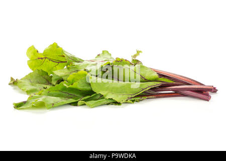 Beet greens bundle isolated on white background young fresh leaves - Stock Photo