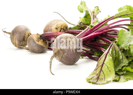 Red beet bundle with fresh greens isolated on white background five bulbs root with leaves - Stock Photo
