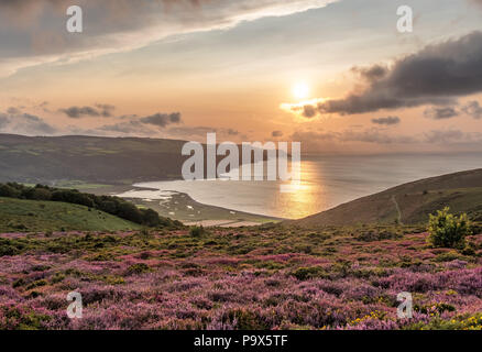 View across Porlock Marsh and Bossington Beach as the  sun dips towards Forleland Point from Bossington Hill with heather and gorse in the foreground - Stock Photo